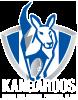 logo-nmfc